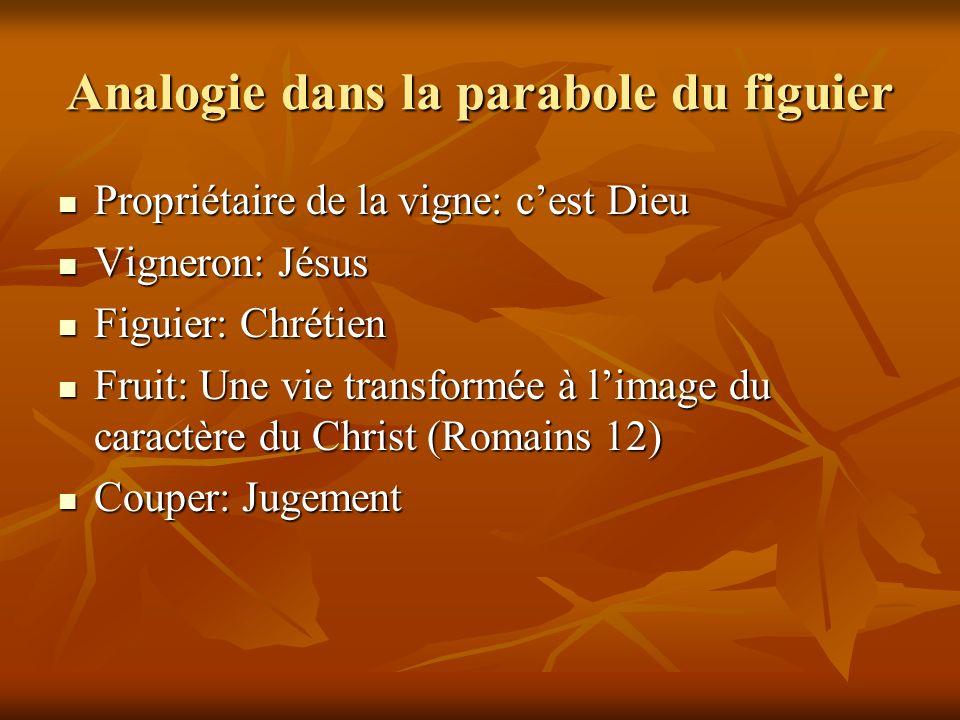 Analogie dans la parabole du figuier Propriétaire de la vigne: cest Dieu Propriétaire de la vigne: cest Dieu Vigneron: Jésus Vigneron: Jésus Figuier: