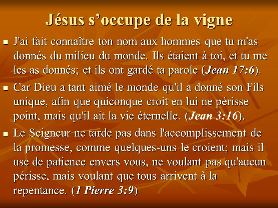 Jésus soccupe de la vigne J'ai fait connaître ton nom aux hommes que tu m'as donnés du milieu du monde. Ils étaient à toi, et tu me les as donnés; et