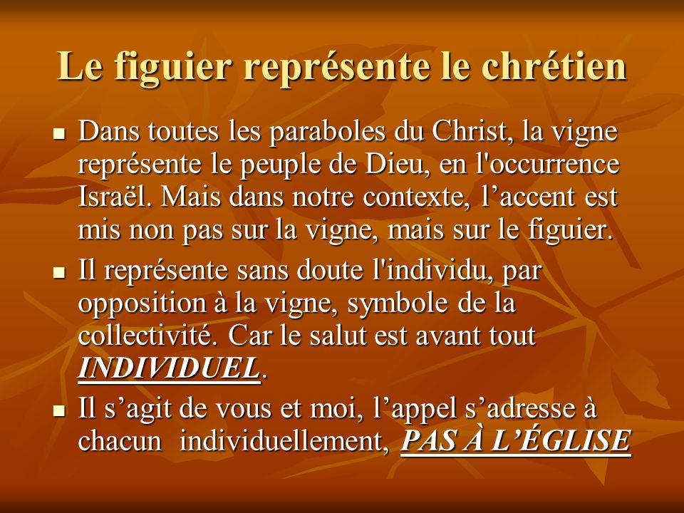 Le figuier représente le chrétien Dans toutes les paraboles du Christ, la vigne représente le peuple de Dieu, en l'occurrence Israël. Mais dans notre