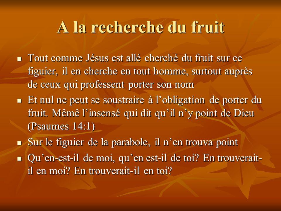 A la recherche du fruit Tout comme Jésus est allé cherché du fruit sur ce figuier, il en cherche en tout homme, surtout auprès de ceux qui professent