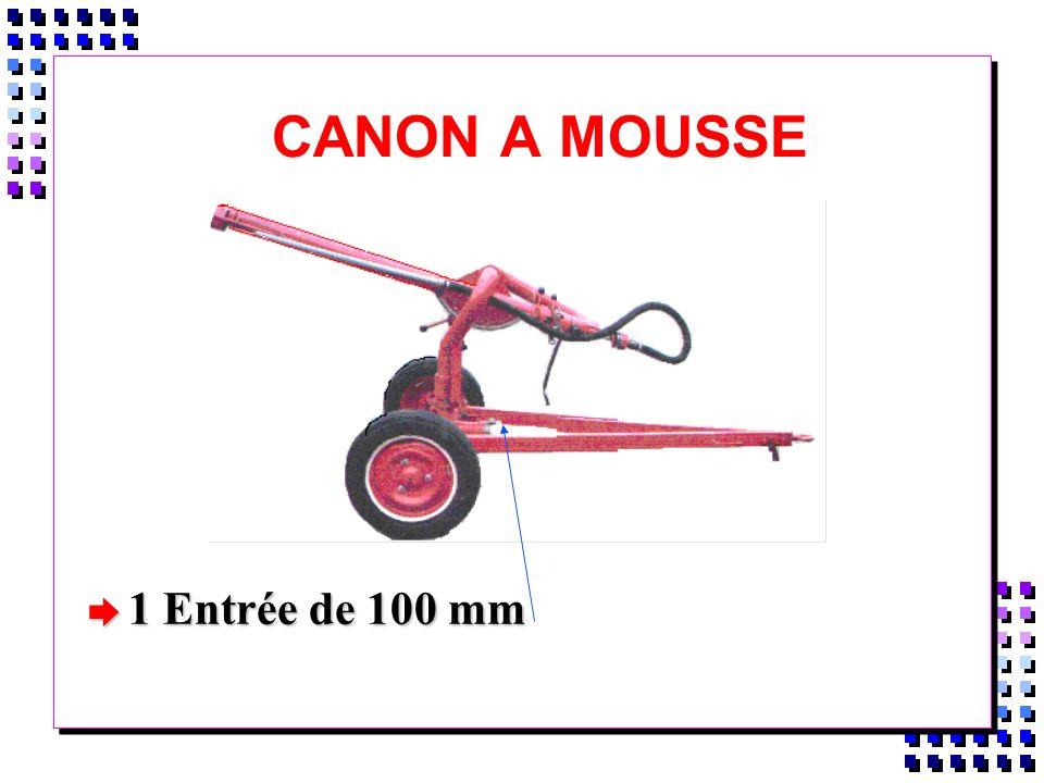 CANON A MOUSSE è 1 Entrée de 100 mm