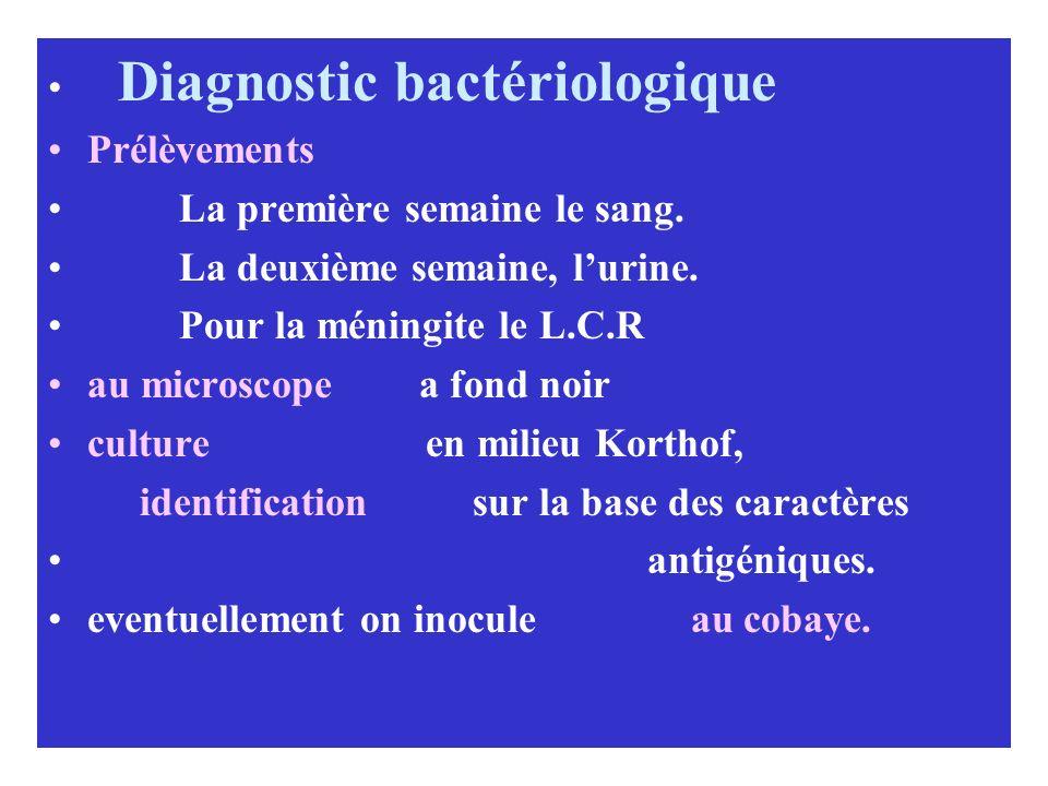 Diagnostic bactériologique Prélèvements La première semaine le sang. La deuxième semaine, lurine. Pour la méningite le L.C.R au microscope a fond noir