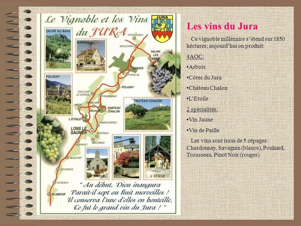 Les vins du Jura Ce vignoble millénaire sétend sur 1850 héctares; aujourdhui on produit: 4AOC: Arbois Côtes du Jura Château Chalon LEtoile 2 spécialit