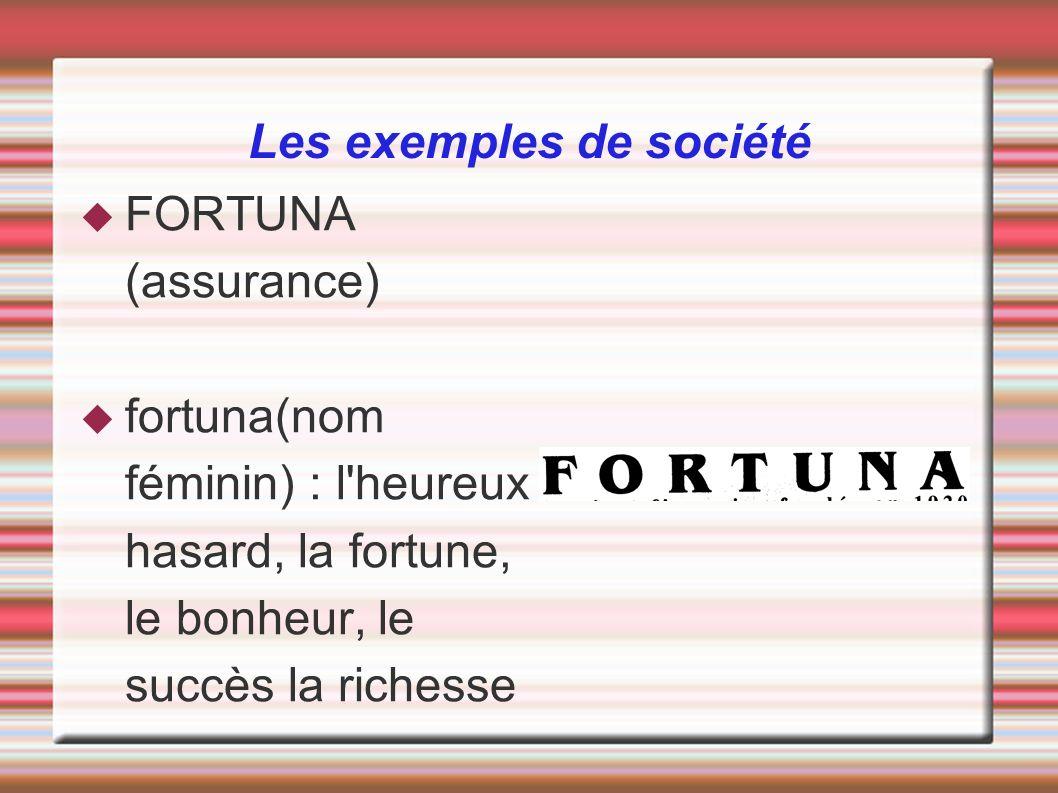 Les exemples de société FORTUNA (assurance) fortuna(nom féminin) : l'heureux hasard, la fortune, le bonheur, le succès la richesse