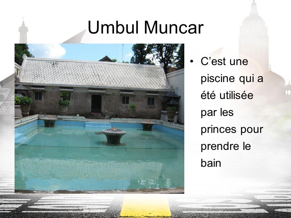 Umbul Muncar Cest une piscine qui a été utilisée par les princes pour prendre le bain