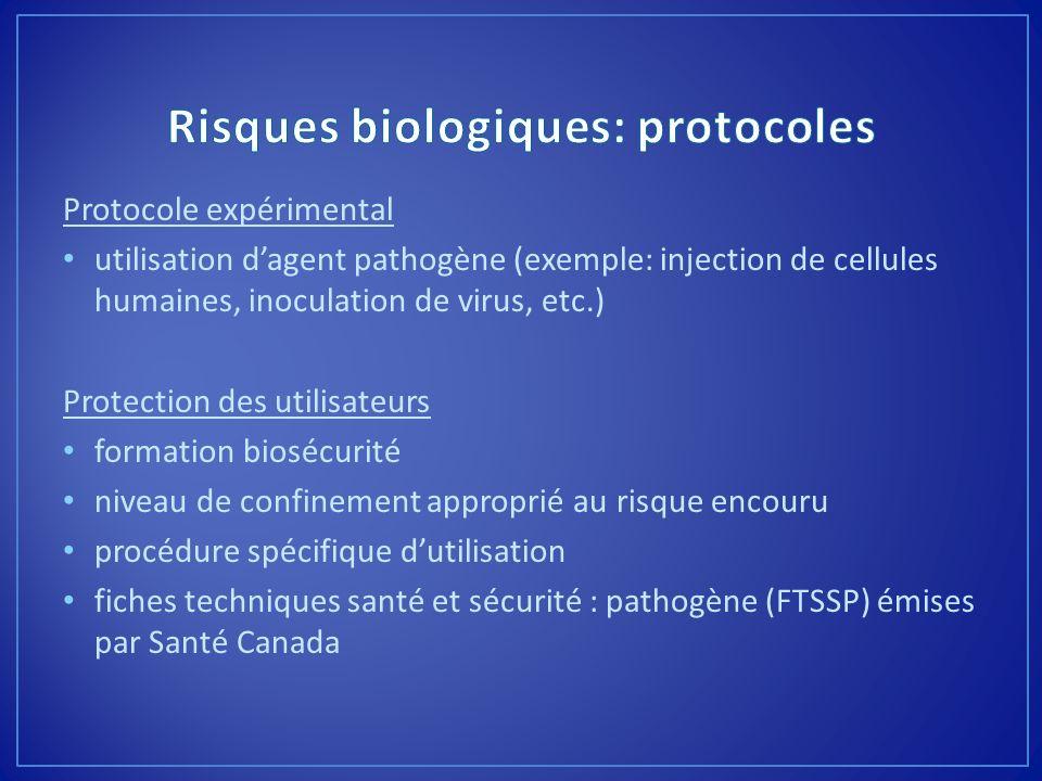 Protocole expérimental utilisation dagent pathogène (exemple: injection de cellules humaines, inoculation de virus, etc.) Protection des utilisateurs
