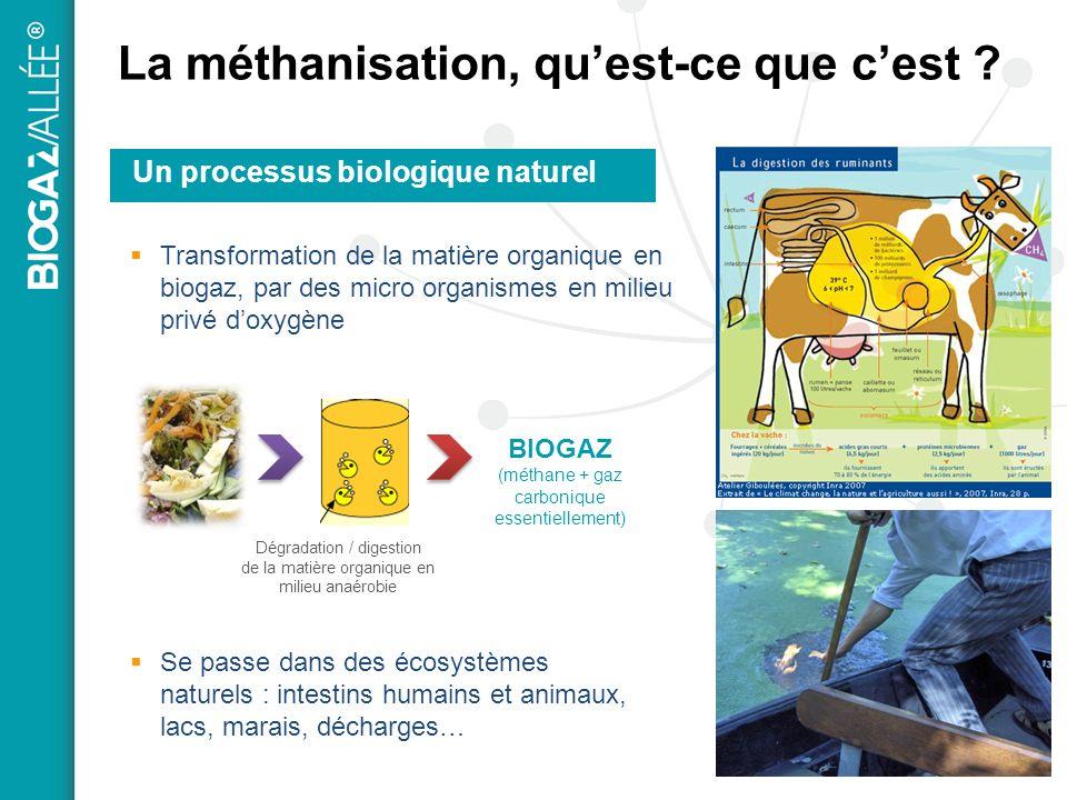 La méthanisation, quest-ce que cest ? Un processus biologique naturel Se passe dans des écosystèmes naturels : intestins humains et animaux, lacs, mar
