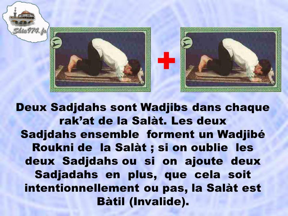 Deux Sadjdahs sont Wadjibs dans chaque rakat de la Salàt. Les deux Sadjdahs ensemble forment un Wadjibé Roukni de la Salàt ; si on oublie les deux Sad