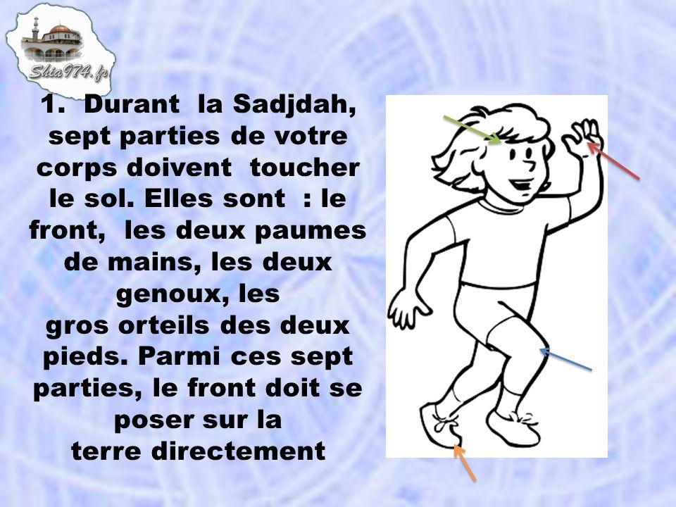 1. Durant la Sadjdah, sept parties de votre corps doivent toucher le sol. Elles sont : le front, les deux paumes de mains, les deux genoux, les gros o