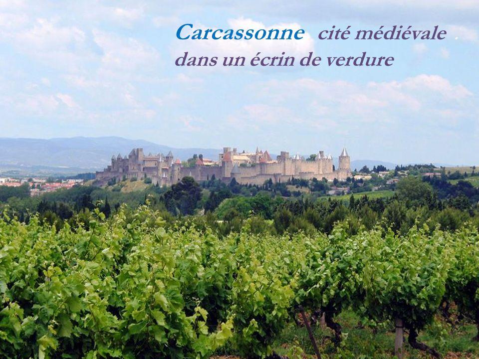 Carcassonne cité médiévale. dans un écrin de verdure