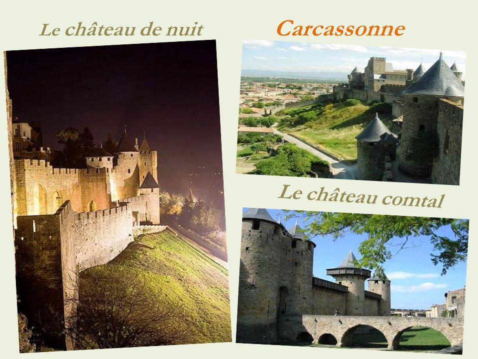 Panorama du village... Saissac.. Château du Xe siècle