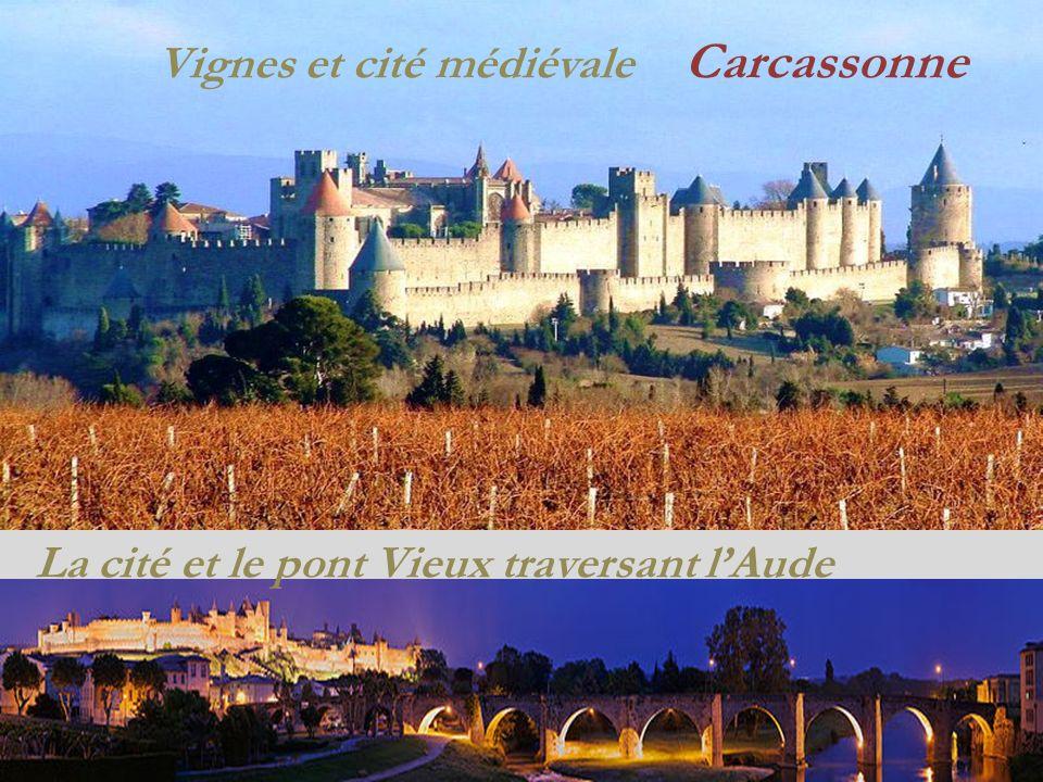 Vignes et cité médiévale Carcassonne La cité et le pont Vieux traversant lAude