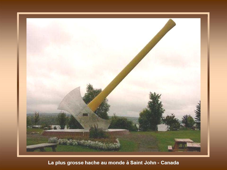 Parc Préhistorique à Calgary - Canada