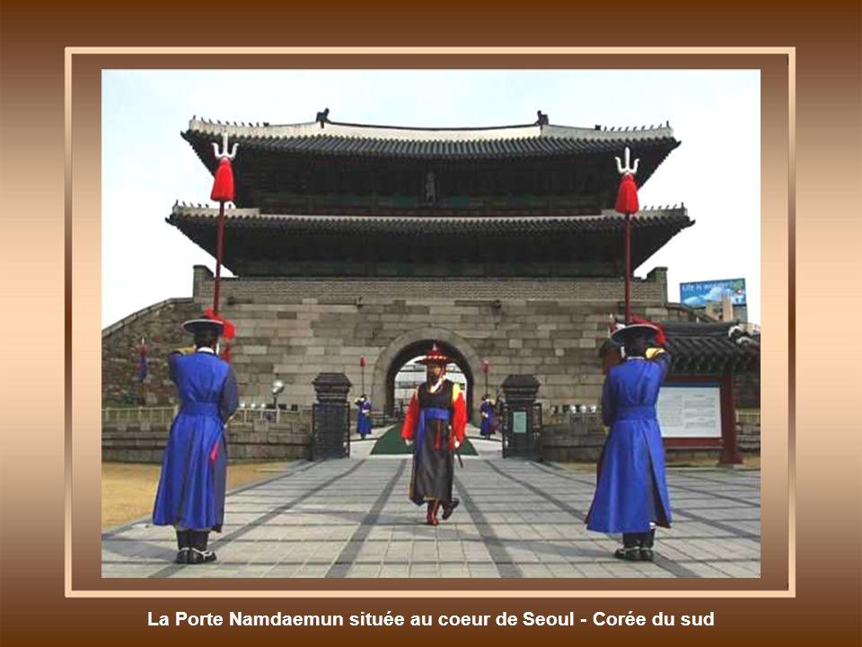 Cultures en terrasse - Chine