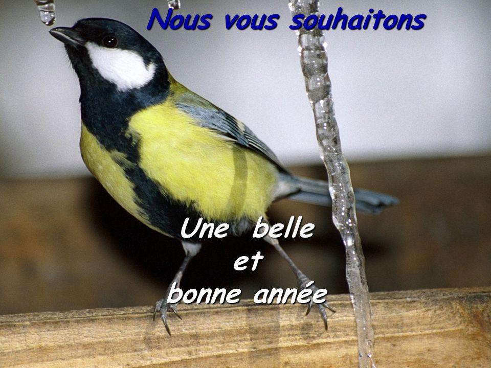 Nous pensons bien à vous Francine et Michel BOMONT