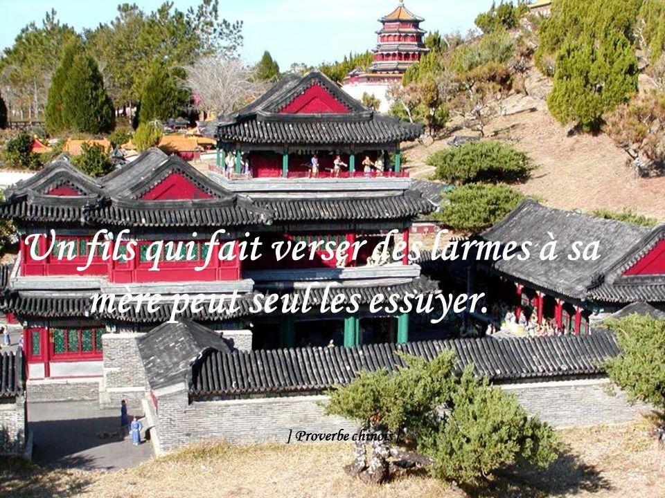 Si perçante soit la vue, on ne se voit jamais de dos ] Proverbe chinois [