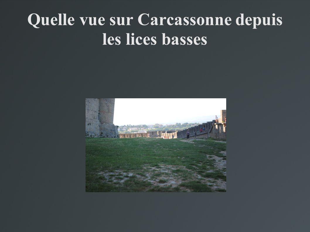Quelle vue sur Carcassonne depuis les lices basses