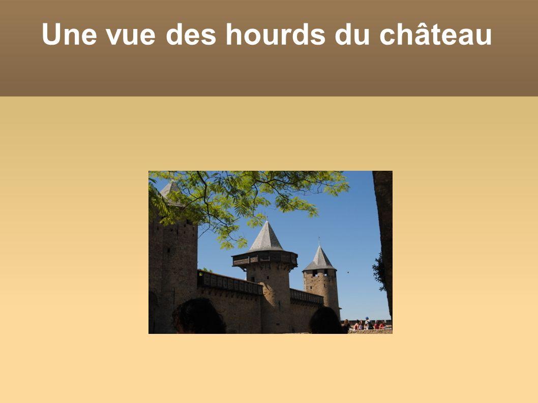 Une vue des hourds du château