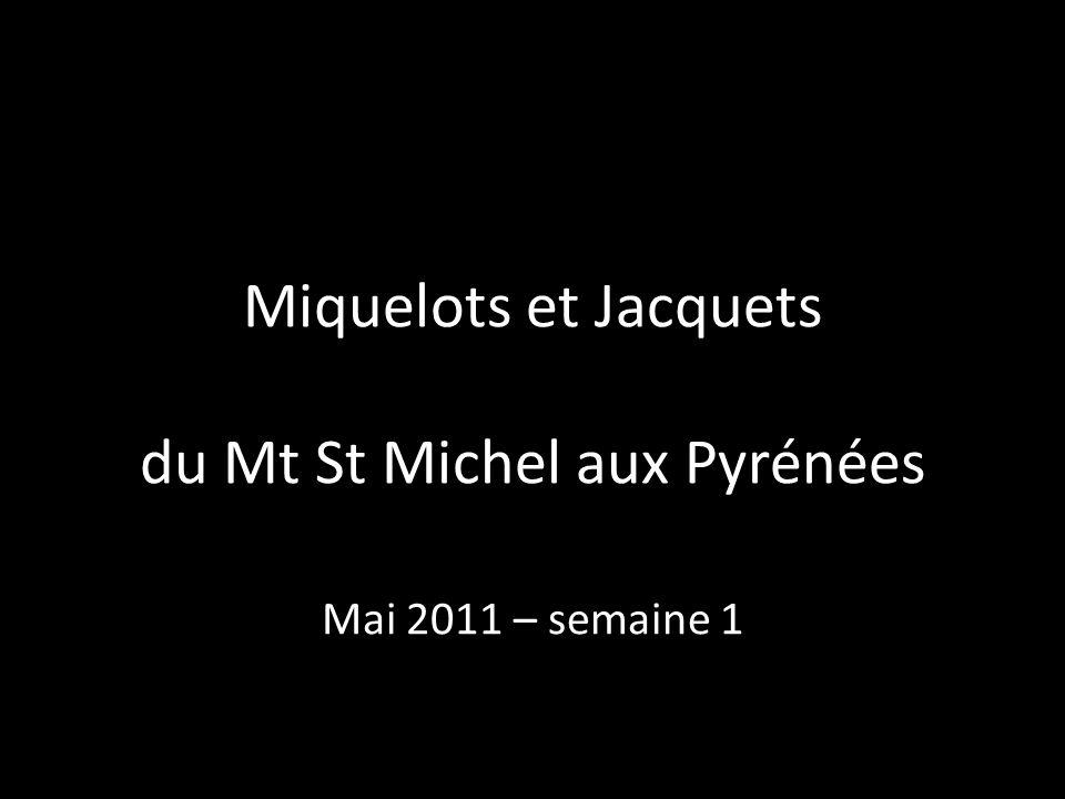 Miquelots et Jacquets du Mt St Michel aux Pyrénées Mai 2011 – semaine 1