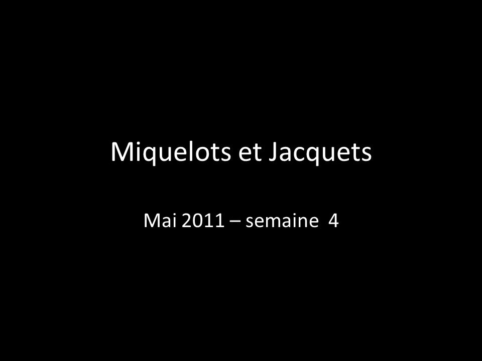 Miquelots et Jacquets Mai 2011 – semaine 4