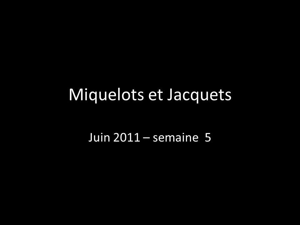 Miquelots et Jacquets Juin 2011 – semaine 5
