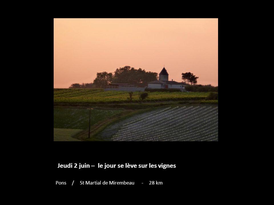 Jeudi 2 juin – le jour se lève sur les vignes Pons / St Martial de Mirembeau - 28 km