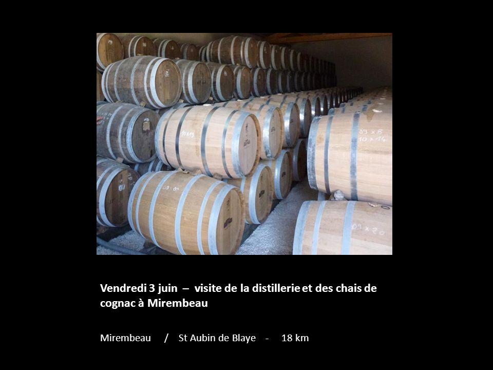 Vendredi 3 juin – visite de la distillerie et des chais de cognac à Mirembeau Mirembeau / St Aubin de Blaye - 18 km