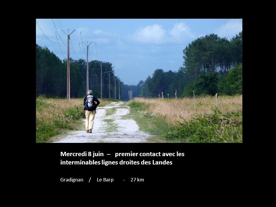 Mercredi 8 juin – premier contact avec les interminables lignes droites des Landes Gradignan / Le Barp - 27 km
