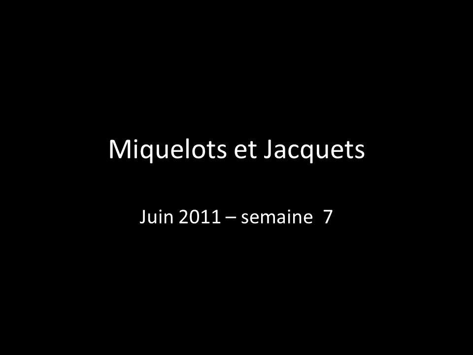 Miquelots et Jacquets Juin 2011 – semaine 7