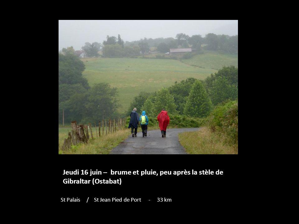 Jeudi 16 juin – brume et pluie, peu après la stèle de Gibraltar (Ostabat) St Palais / St Jean Pied de Port - 33 km