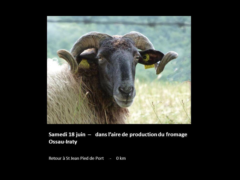 Samedi 18 juin – dans laire de production du fromage Ossau-Iraty Retour à St Jean Pied de Port - 0 km