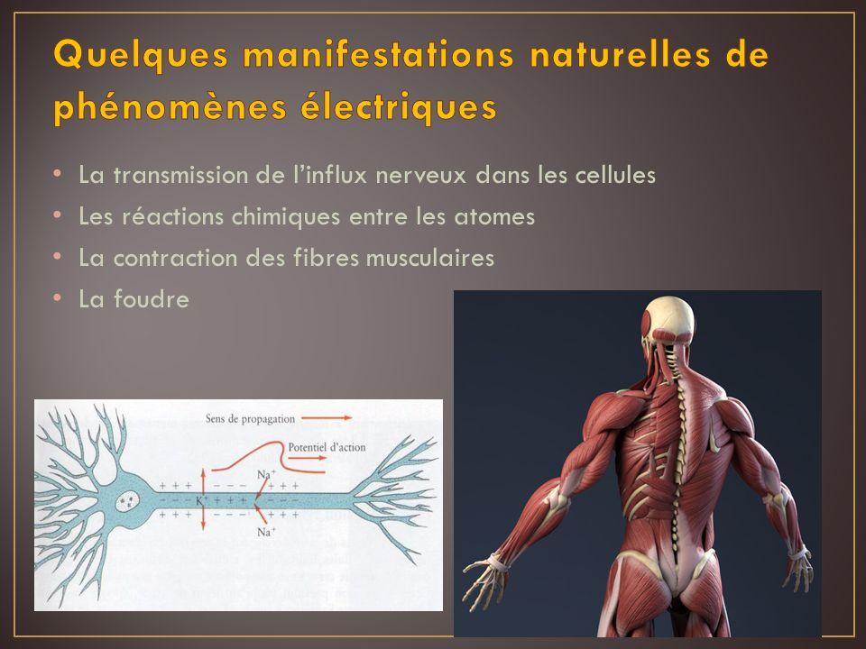 La transmission de linflux nerveux dans les cellules Les réactions chimiques entre les atomes La contraction des fibres musculaires La foudre