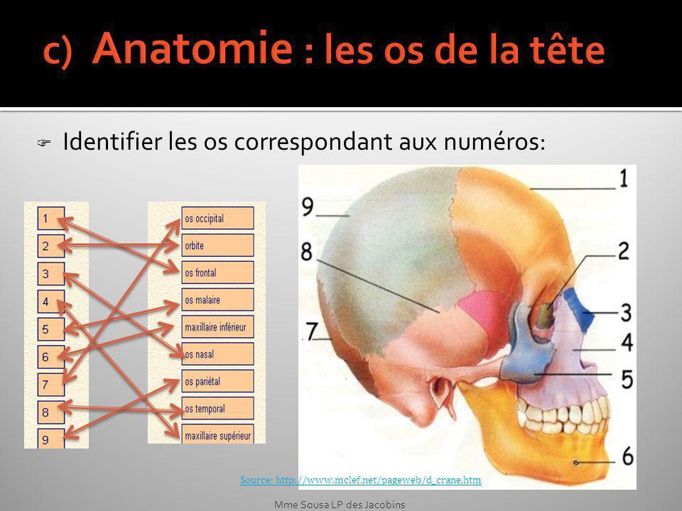 Source: http://www.mclef.net/pageweb/d_crane.htm Identifier les os correspondant aux numéros: Mme Sousa LP des Jacobins
