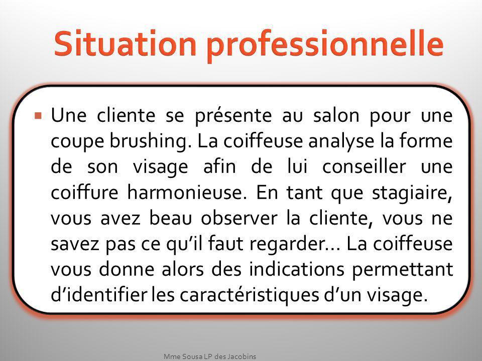Mme Sousa LP des Jacobins Situation professionnelle Une cliente se présente au salon pour une coupe brushing.