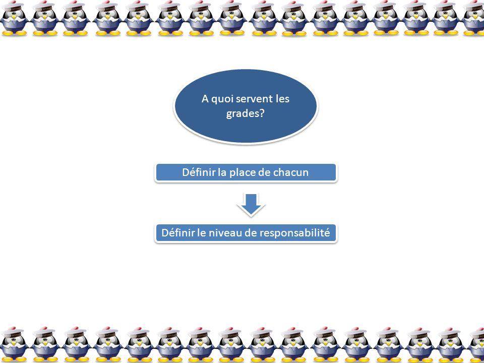 A quoi servent les grades? A quoi servent les grades? Définir la place de chacun Définir la place de chacun Définir le niveau de responsabilité Défini