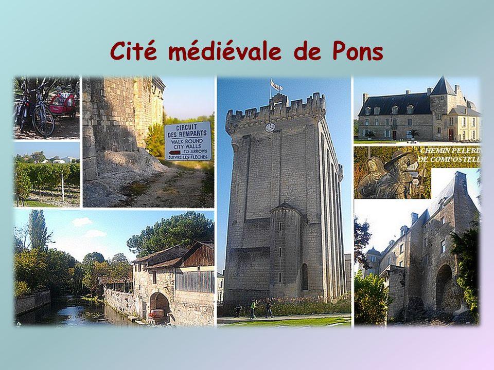 Pont transbordeur Œuvre de lingénieur, constructeur Ferdinand Amodin, ce pont relie les 2 rivages de la Charente. Cest le dernier pont transbordeur ex