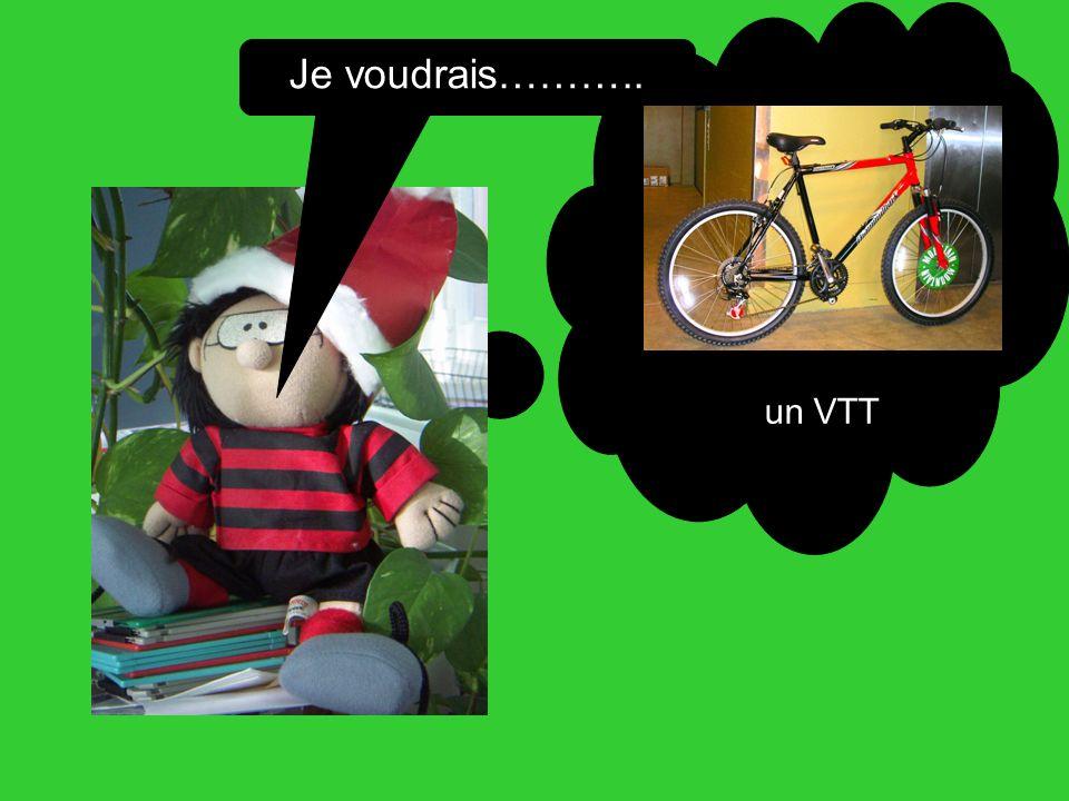 Je voudrais……….. un VTT