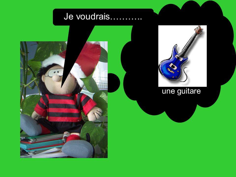 Je voudrais……….. une guitare