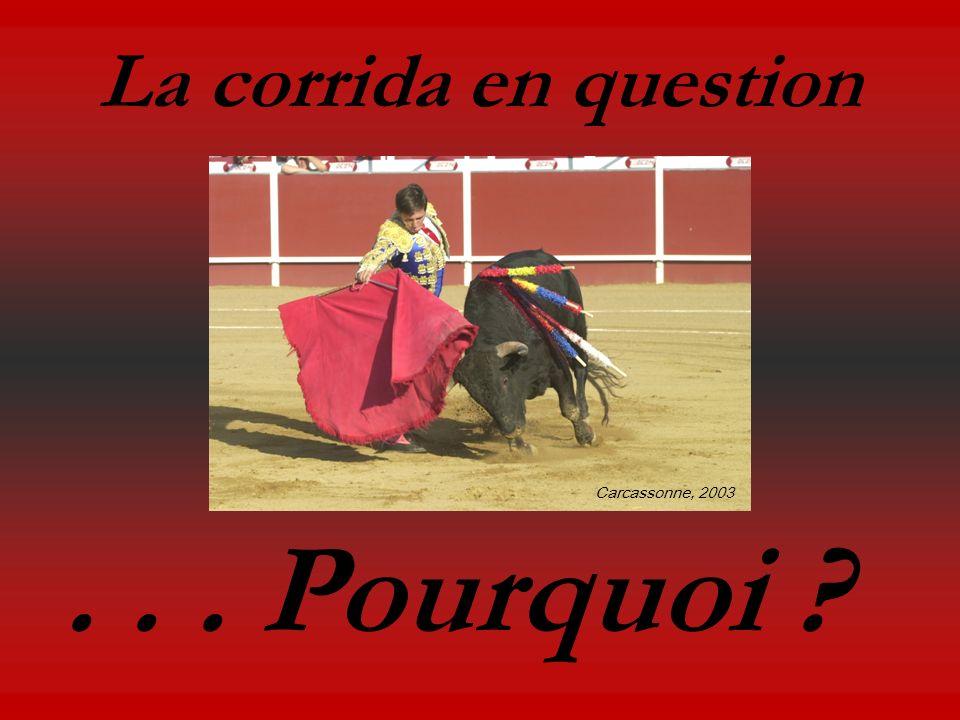 La corrida en question... Pourquoi ? Carcassonne, 2003