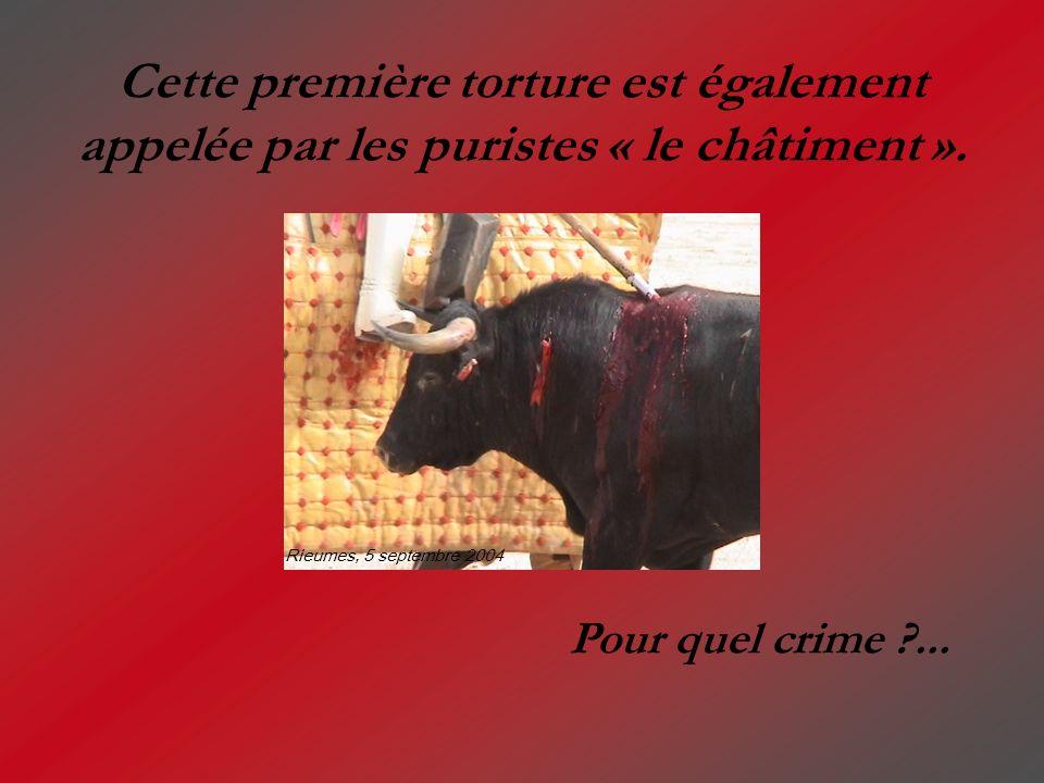 Cette première torture est également appelée par les puristes « le châtiment ». Pour quel crime ?... Rieumes, 5 septembre 2004