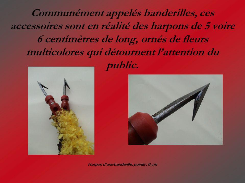 Communément appelés banderilles, ces accessoires sont en réalité des harpons de 5 voire 6 centimètres de long, ornés de fleurs multicolores qui détour