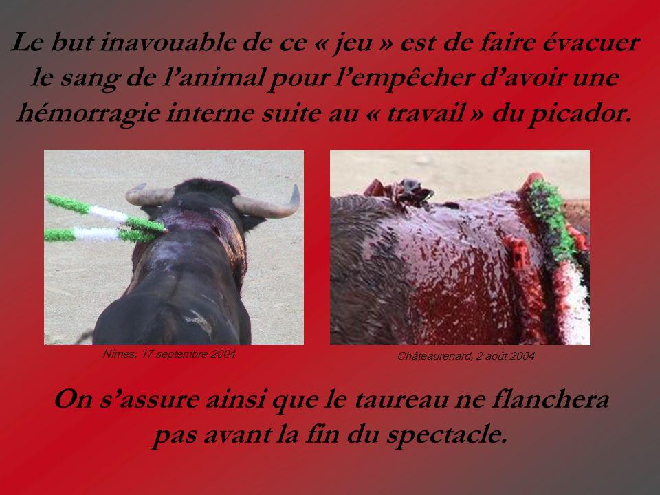 Le but inavouable de ce « jeu » est de faire évacuer le sang de lanimal pour lempêcher davoir une hémorragie interne suite au « travail » du picador.