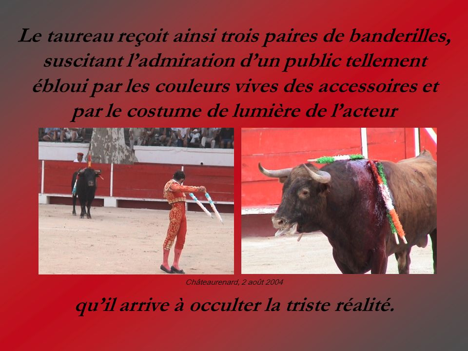 Le taureau reçoit ainsi trois paires de banderilles, suscitant ladmiration dun public tellement ébloui par les couleurs vives des accessoires et par l