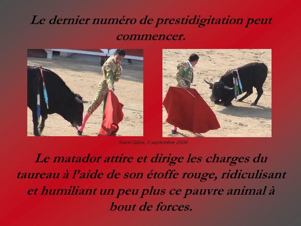 Le dernier numéro de prestidigitation peut commencer. Le matador attire et dirige les charges du taureau à laide de son étoffe rouge, ridiculisant et