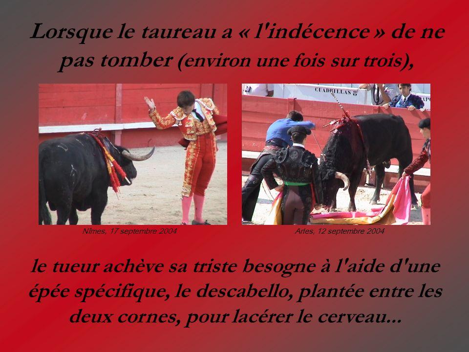 Lorsque le taureau a « l'indécence » de ne pas tomber (environ une fois sur trois), le tueur achève sa triste besogne à l'aide d'une épée spécifique,