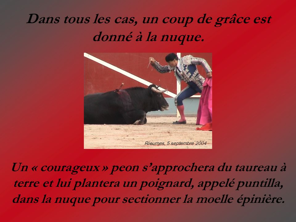 Dans tous les cas, un coup de grâce est donné à la nuque. Un « courageux » peon sapprochera du taureau à terre et lui plantera un poignard, appelé pun
