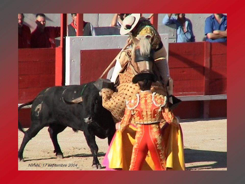 A chaque poussée du taureau, la pique senfonce un peu plus, jusquà 14 cm.
