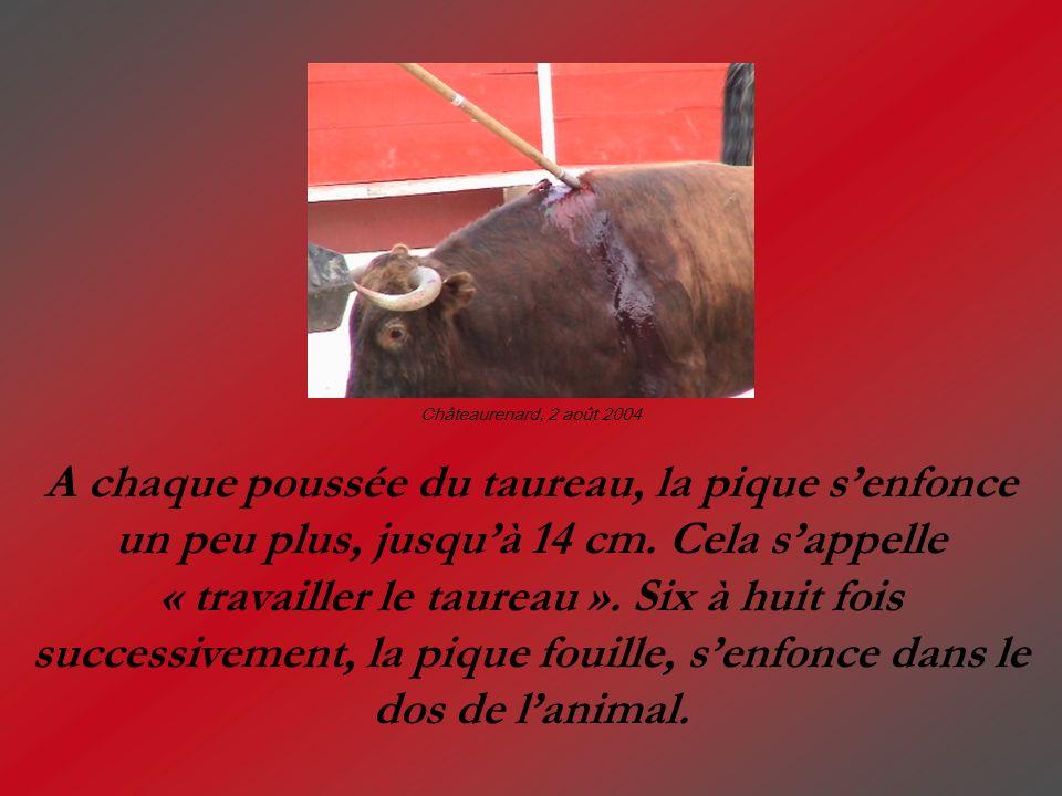 Lorsque le taureau a « l indécence » de ne pas tomber (environ une fois sur trois), le tueur achève sa triste besogne à l aide d une épée spécifique, le descabello, plantée entre les deux cornes, pour lacérer le cerveau...