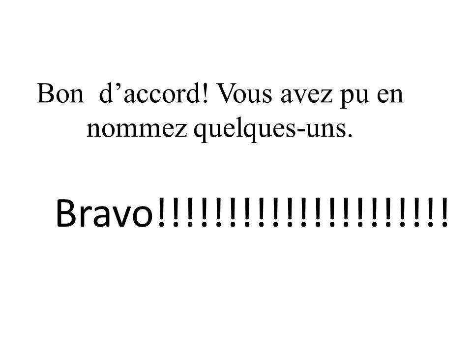 Bon daccord! Vous avez pu en nommez quelques-uns. Bravo!!!!!!!!!!!!!!!!!!!!!