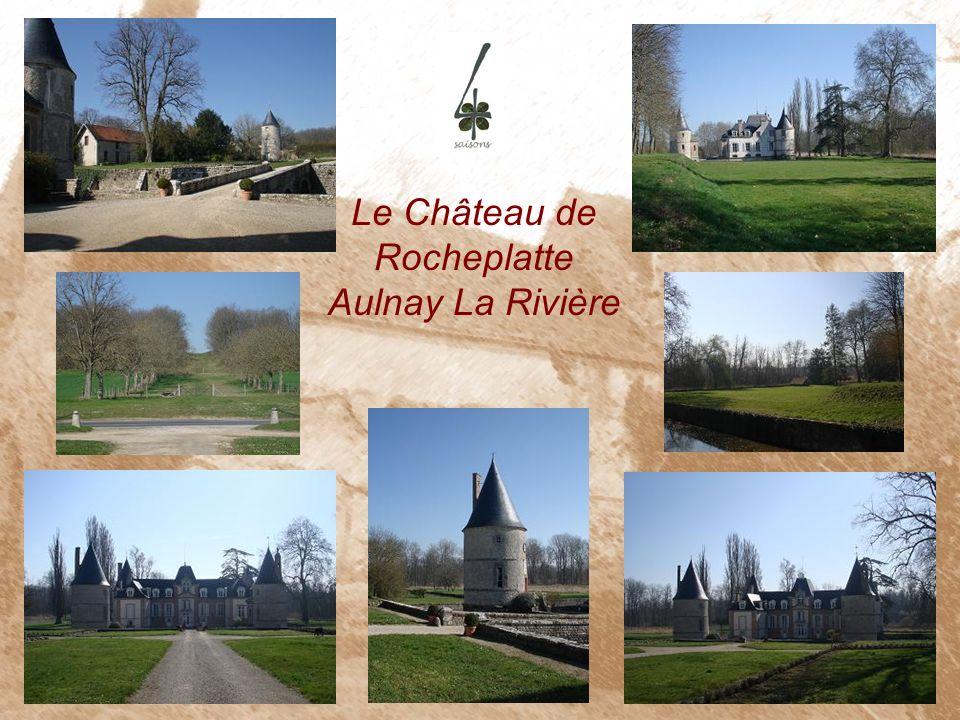Le Château de Rocheplatte Aulnay La Rivière